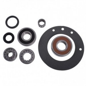 BK-AX15 REBUILD - bearing seal kit